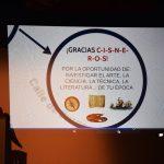 Vídeo y Fotos Inauguración del Año de Cisneros en Torrelaguna