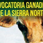 Presentación Ganadería Sierra Norte en Buitrago