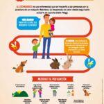 Como prevenir la Leishmaniasis