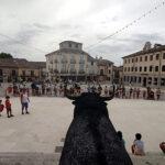 Segunda suelta de carretones en la Plaza Mayor