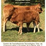 LXXXIV Subasta Nacional de ganado selecto